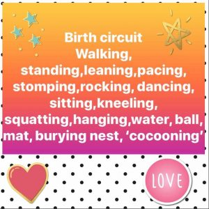 Do you have a birth circuit?